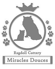 LOGO Ragdoll Cattery Miracles Douces